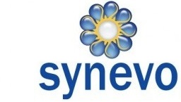 Organization of corporate network, and VoIP in international company Synevo